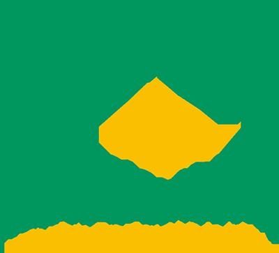 logo_HS_100jr_vert_fc